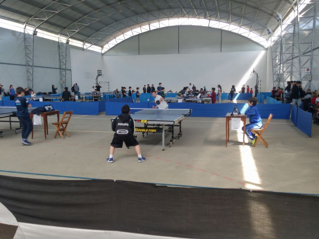 Resultado de imagen para tenis de mesa uruguay